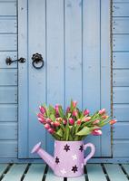 Тюльпаны на крыльце