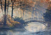 Старый мост в осеннем парке