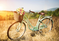 Старый велосипед в поле