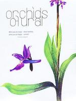 Орхидеи Урала (40 почтовых открыток в наборе)